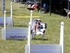 flyball-dziec584-ii010129