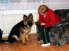 kucharz-i-jego-pies15