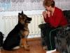 kucharz-i-jego-pies18