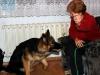 kucharz-i-jego-pies19