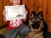 pies-w-formie-certyfikat10