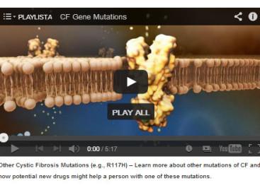 CF Genetics – podstawowe informacje cd.