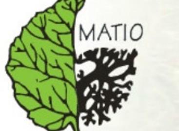 Do końca roku odpisz darowiznę – Matio