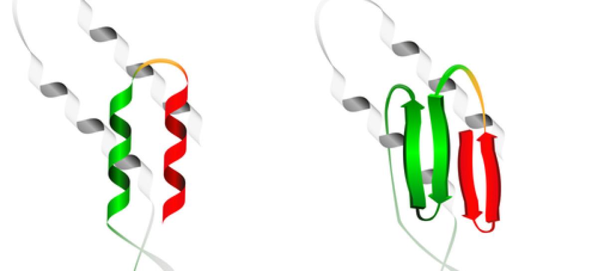 Nowe możliwości terapii CF w oparciu o badania do zwijania białek