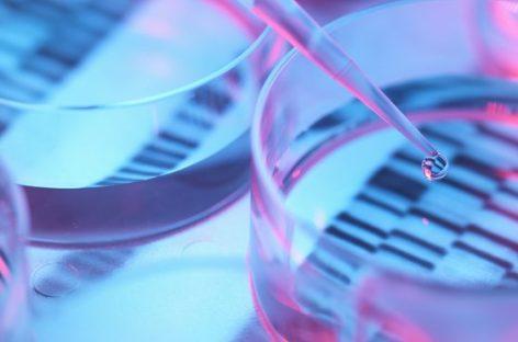 Naukowcy odkrywają – czy mukowiscydoza to dwie choroby?