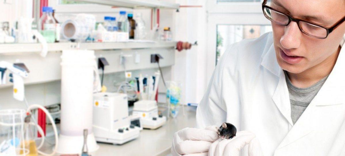 Mechanizm działania SPX-101 ma być niezależny od mutacji genetycznych
